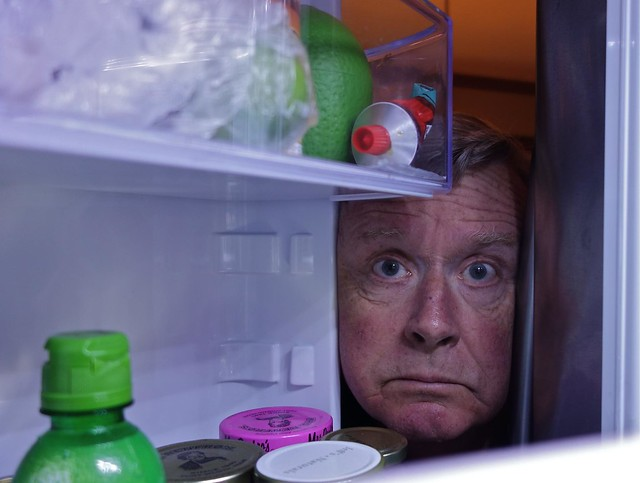 Refrigerator Check