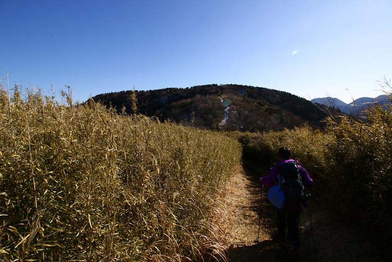 20150214-明神ヶ岳-0288.jpg
