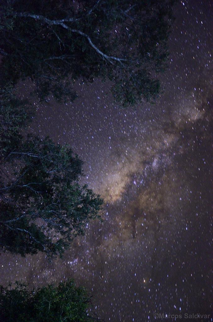 Vía Láctea desde el Chaco paraguayo   AstroPY   Flickr