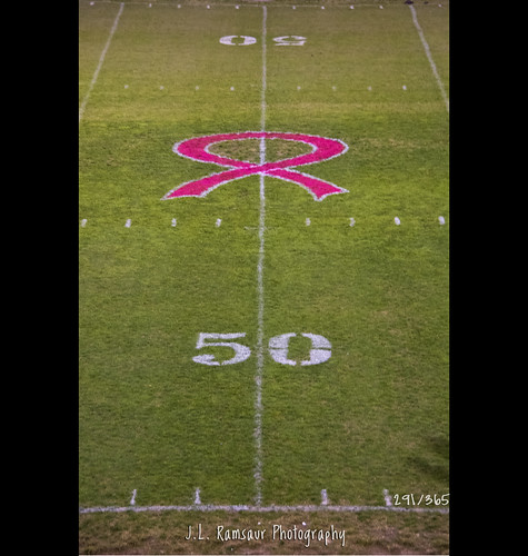 pink sports rural photography photo football athletics nikon october tennessee sportsillustrated pic photograph thesouth 365 footballfield 50 breastcancerawareness highschoolfootball pinkribbon cumberlandplateau ruralamerica sportsphotography cumberlandcounty 50yardline highschoolsports cancerawareness project365 middletennessee 2013 crossvilletn ruraltennessee ruralview highschoolathletics realmenwearpink 365daysproject 365project 365photos savethetatas ibeauty 291365 d5200 southernphotography screamofthephotographer jlrphotography photographyforgod cavalierfootball chsfootball nikond5200 engineerswithcameras cookevillecavalierfootball cavsfootball jlramsaurphotography sports–highschool 1yearofphotographs 365photographsinayear 1shotperdayfor1year