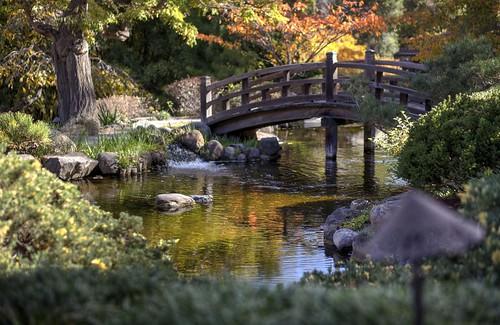 hakonegardens saratoga autumn colors bridge hdr 3xp raw nex6 sel50f18 photomatix california fav50 siliconvalley sanfranciscobay