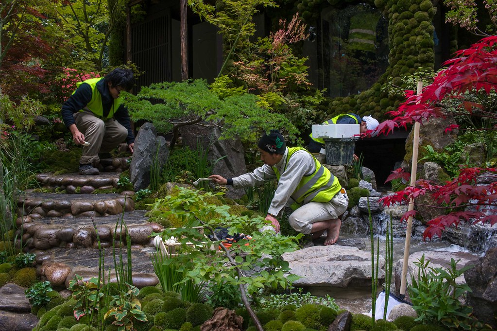 Chelsea Flower Show Set-up 2014