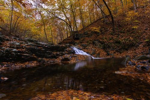 lowlight dusk autumn fall foliage creek waterfall longexposure vibrant colorful nature forest leaves patapscostatepark hike trailsawmilltrail natural hss sliderssunday