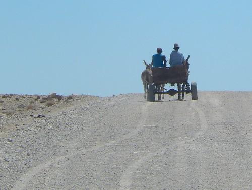 Onderweg naar Twyfelfontein - 1