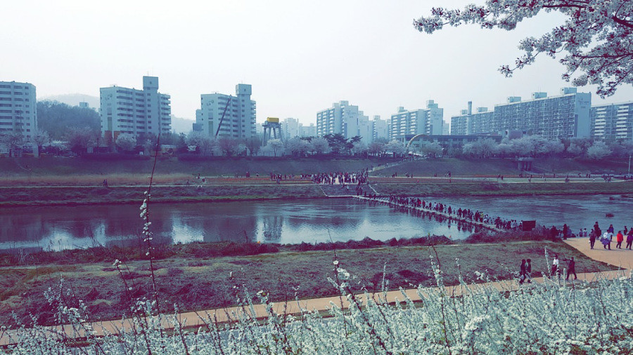 Nguyen, Anna; South Korea - Episode 12 (11)