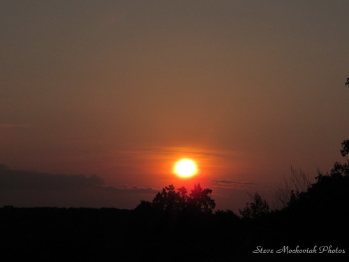 trees sky sunrise canon powershot paintedsky sx150is smack53 wmsunrise