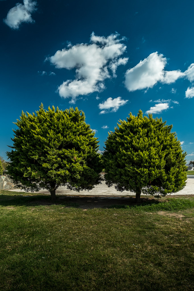 FUJI X-PRO1 & 14mm LENS | First day and shutter of my new 14