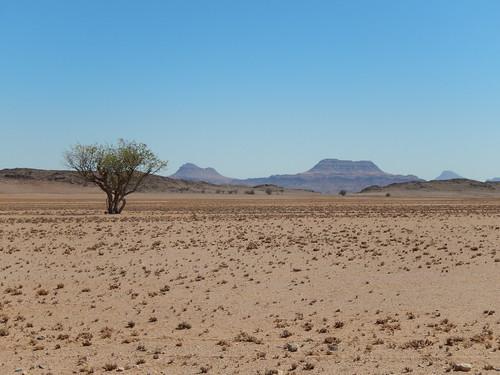 Onderweg naar Twyfelfontein - 3