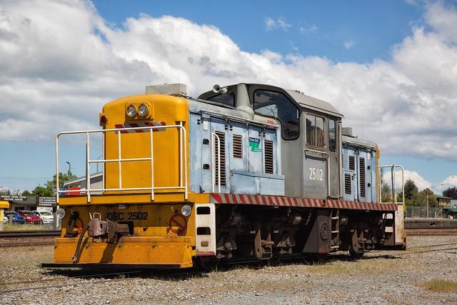 DSC2502 at Ashburton