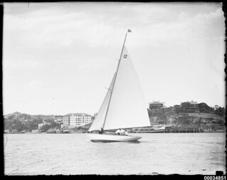 Single mast yacht near Neutral Bay, Sydney