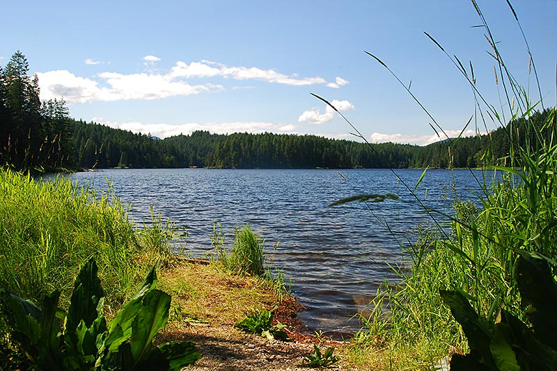 Main Lake Provincial Park, Quadra Island, Discovery Islands, British Columbia, Canada