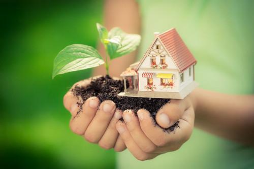 Bízza szakembereinkre a zöldprogram pályázat megírását!
