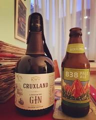 838 Pale Ale #838paleale #bohemia #saopaulo #copan #beer #cerveja #ipa #gin #cruxlandgin