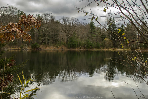 smack53 latefall lateautumn fall fallseason autumn autumnseason lake melodylake pond palpond westmilford newjersey scenic scenery outdoors outside landscape tree trees water reflections clouds cloudy nikon d3100 nikond3100