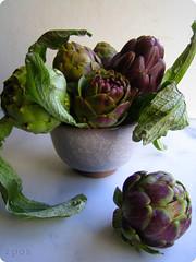 Sicilian Violetta artichokes | by In Praise of Sardines