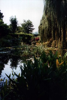 Pond at Giverny