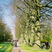 Holland, Keukenhof 20020408