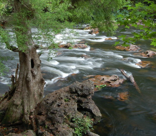 park trees usa holiday color tree art water river landscape photography photo whitewater photographer state florida fine scenic rapids waterblur hillsboro