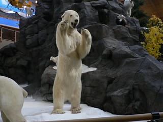 bear | by crowdive