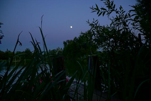 night at the lake 2