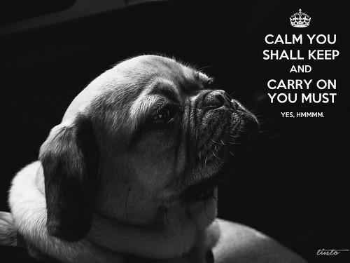 The Teachings of the Puggle.