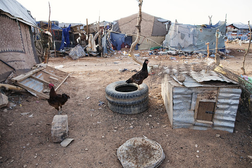 Somalia: Jowle camp for the displaced in Garowe | by EU Civil Protection and Humanitarian Aid Operation