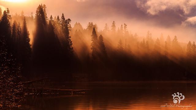The Diamond Lake 2013
