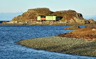 Shack Island high tide