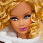 Barbie Collezione moda nel mondo - 20 - CANADA: Gita in barca per osservare le balene