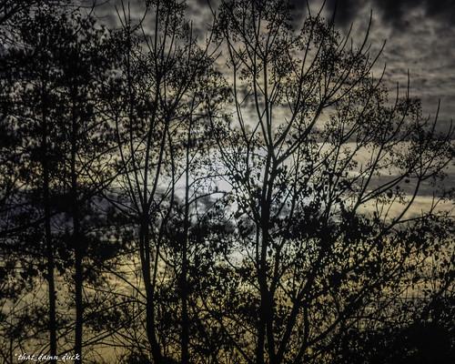 dawn sunrise nature