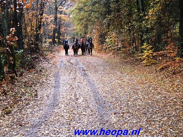 2016-11-16    3e Rondje-WolfHeze   25 Km  (37)