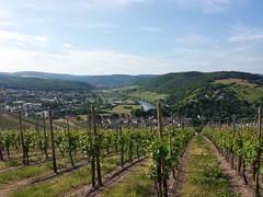 Saarburg trip 2013