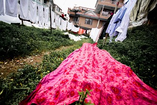 Laundry   by Sharada Prasad