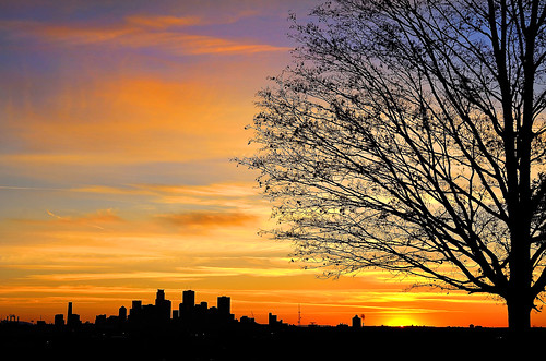 autumn trees sunset orange sunlight fall silhouette yellow clouds colorful cloudy horizon blues downtownminneapolis