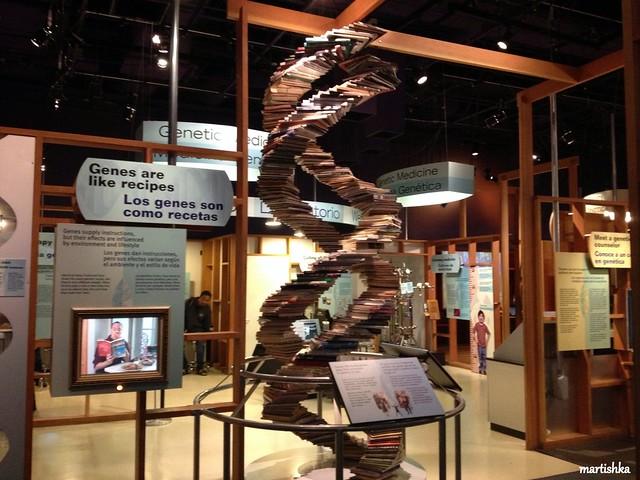 San Jose_The Tech Museum (8)