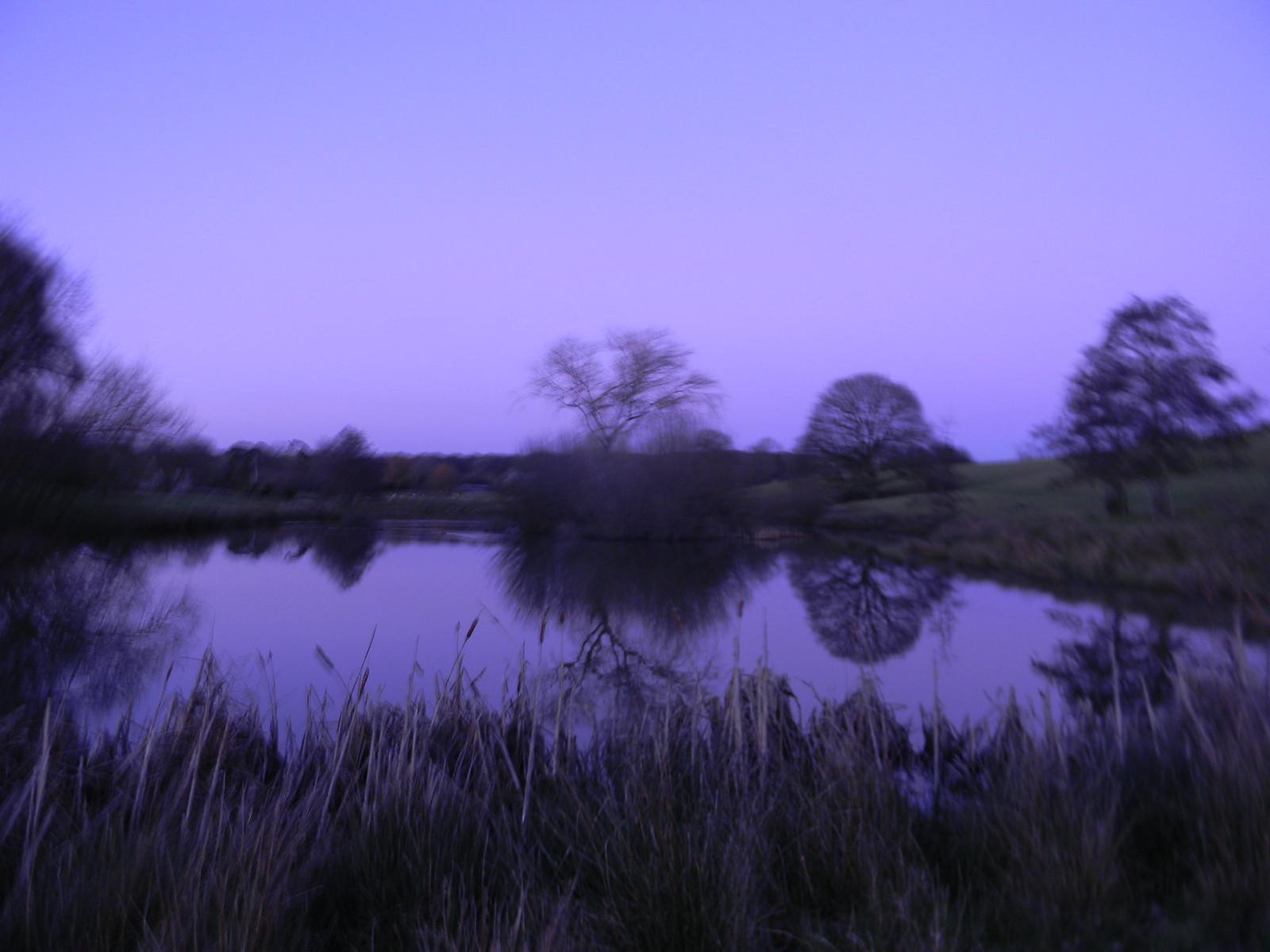 Pond reflections Appledore Short Circular