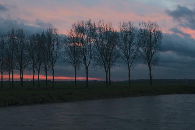 Hertogswetering en Nulandse Kerkdijk op een winterse en winderige namiddag, met bomenrij en zonsondergang