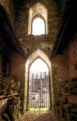 Baltinglass Abbey #5