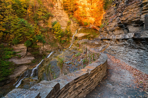 colors sony2470mmf28g cny landscape season nature newyork fall ny trees centralnewyork tompkinscounty tremanstatepark waterfall gorges forest scenic sonya7r2 outdoors luciferfalls traveldestination beautyinnature hiking ithaca sunrise dawn