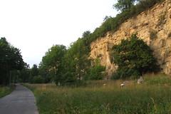 Outcrop, 30.06.2012.
