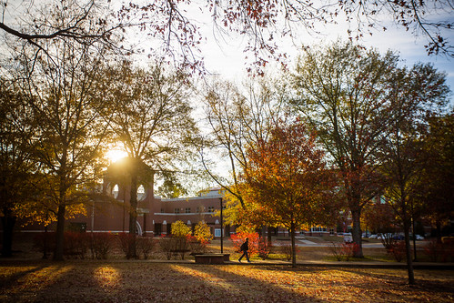 The leaves around campus finally hit peak just as finals week started up.   by Arkansas Tech University
