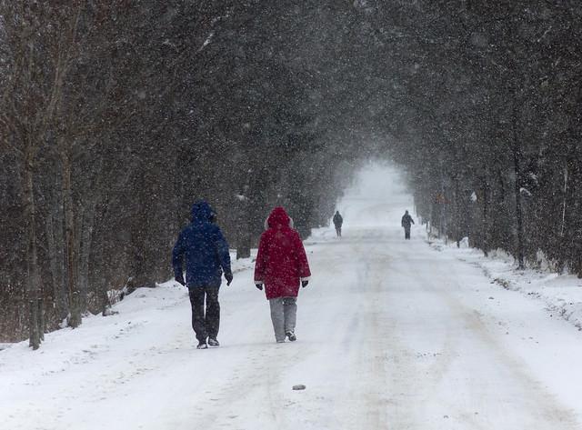 A Winter Promenade
