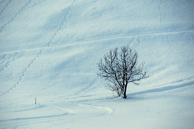 Solstizio d'inverno ... Winter solstice ...