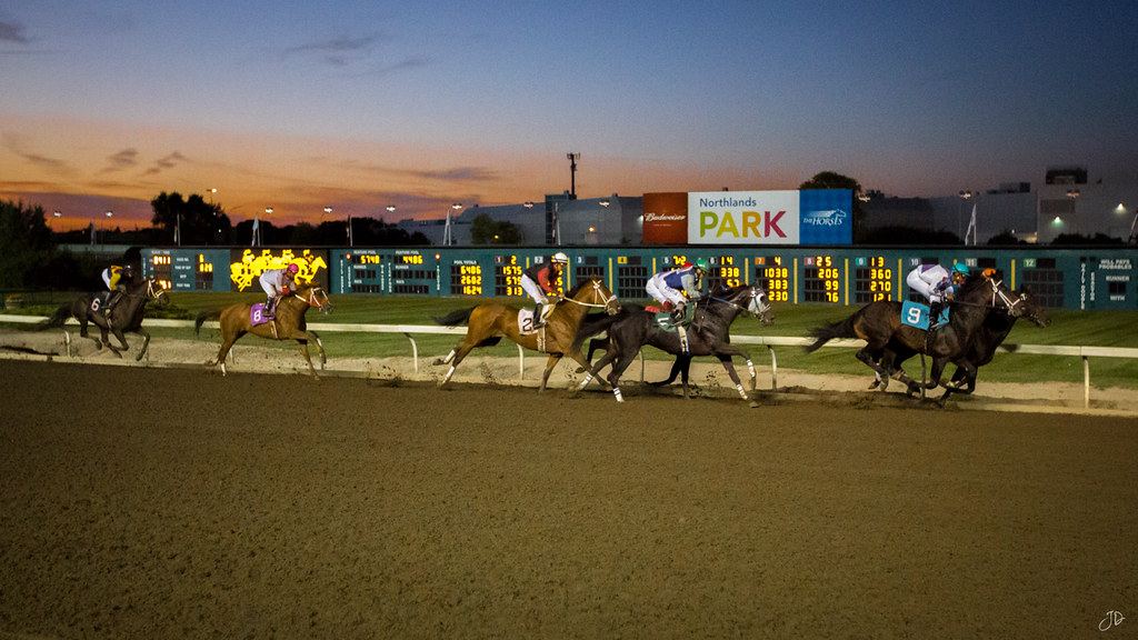 Northlands Park Horse Racing