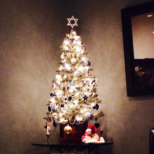 Hanukkah bush a-blazin! #christmakkah #xmas #jewslovexmastoo