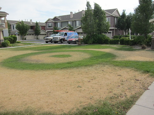Crop Circles | by Ted & Dani
