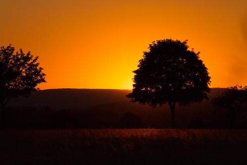deutschland sonnenuntergang sommer landschaft niedersachsen nordstemmen