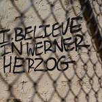 I Believe in Werner Herzog