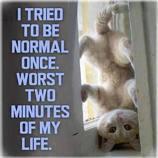 I Tried To Be Normal Once!! Worst Two Minutes Of My Life....