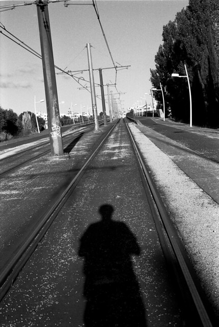 Where are you going... In the shadow of You...